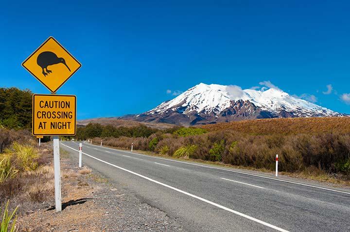 Discover the joys of the Mt Ruapehu Ski Season