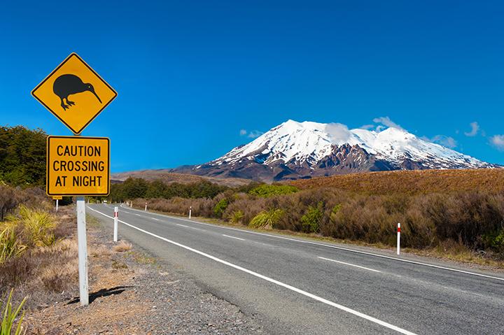Kiwi sign near the road leading to the volcano Mt. Ruapehu, national park Tongariro. New Zealand.