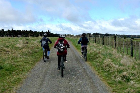 mountain-biking-4