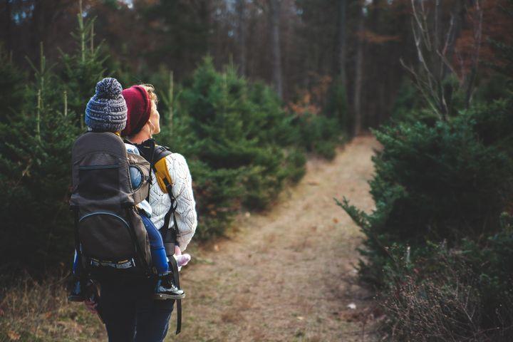 Try these Tongariro walking tracks during the Great Walks season