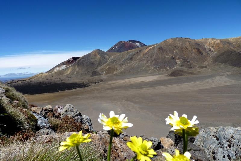 Mount Ruapehu in Summer