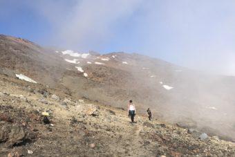 Mt Ruapehu 2020 ski season